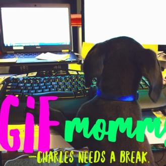 charles-working