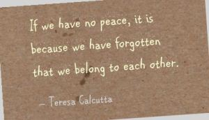 644777562-if-we-have-no-peace-it-is-because-we-have-forgotten-that-we-belong-to-each-other17